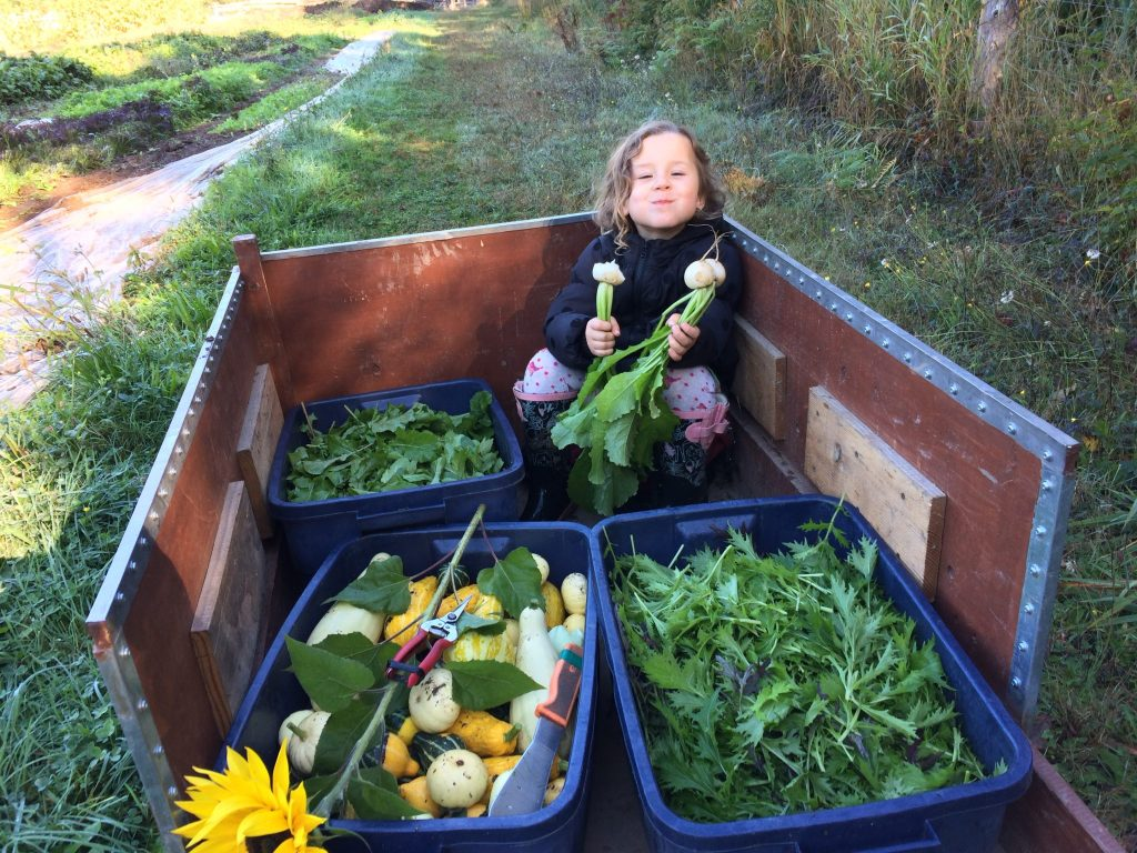 A young girl sits in a wheelbarrow with plastic buckets full of fresh produce.